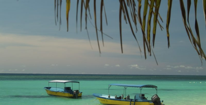 Roatan West Bay boats