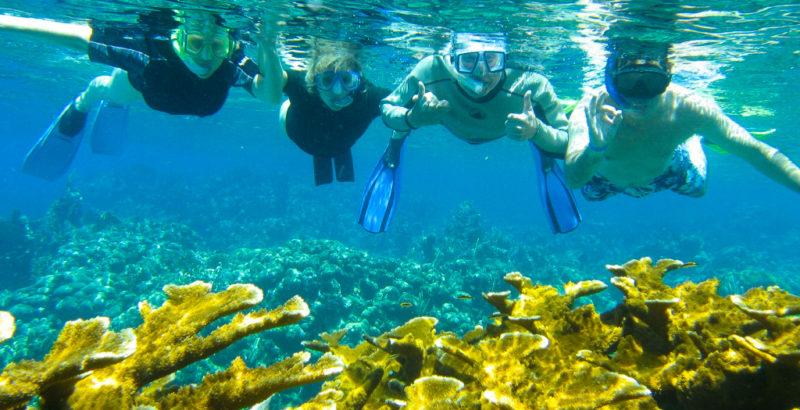 Practicando-snorkel-en-Roatán