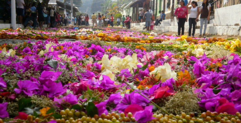 Flower Route