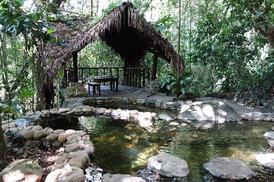 luna-jaguar-hot-spring